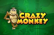 Crazy Monkey - автоматы от Игрософт