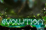 Evolution - удача в клубе Вулкан