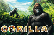 Gorilla - автоматы от Новоматик
