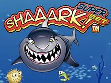 А-A-Aкула Суперставка