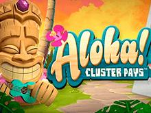 Aloha Cluster Pays от компании Netent – популярная игра среди новичков и опытных слотхантеров